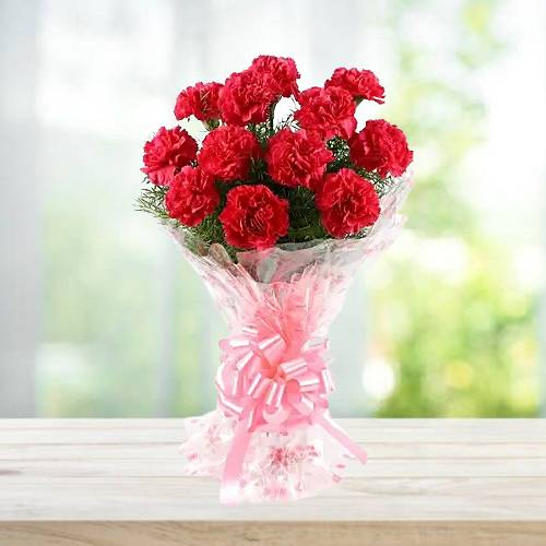 10 Red Carnation Bunch