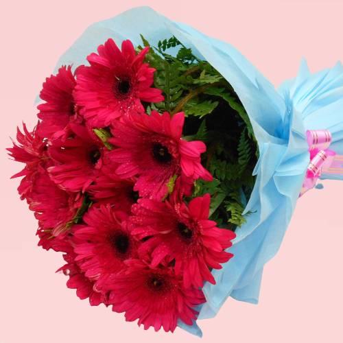Red Gerberas Flowers Delight Bouquet