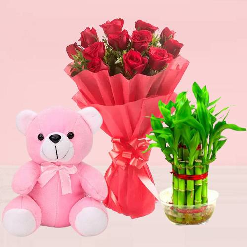 Red Rose Flowers and Teddy With Lucky Bamboo Plant