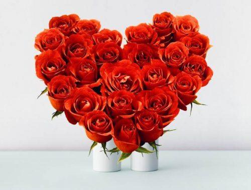 heart-shape-arrangement